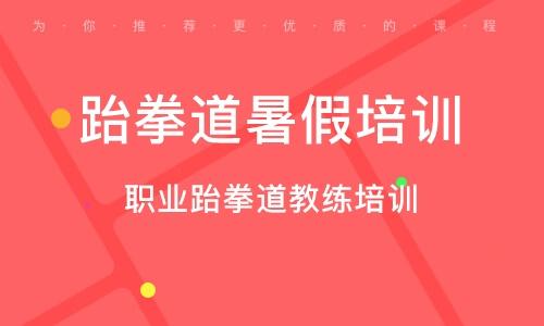 郑州跆拳道暑假培训班
