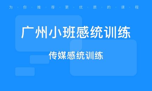 广州小班感统训练