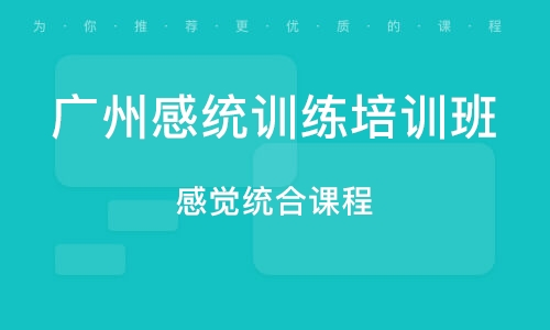 广州感统训练培训班
