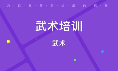 天津武术培训学校