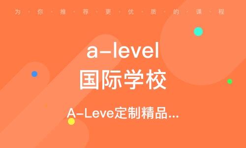 A-Leve定制精品课程