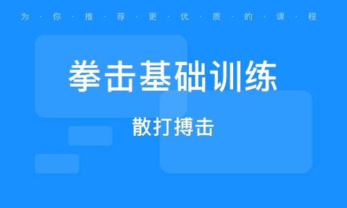 深圳拳击基础训练