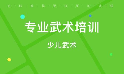 深圳专业武术培训