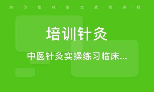 深圳培训针灸