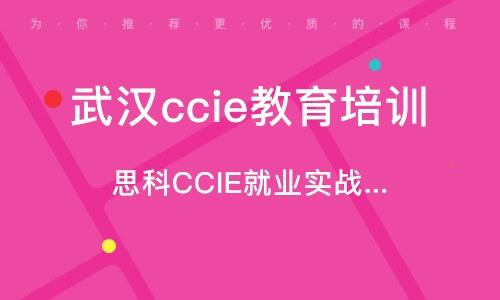 思科CCIE就業實戰班