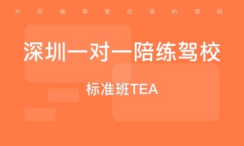 標準班TEA