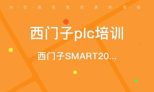 西門子SMART200PLC編程綜合培訓