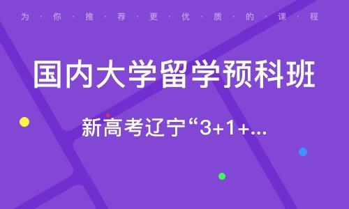 沈阳国内大学留学预科班