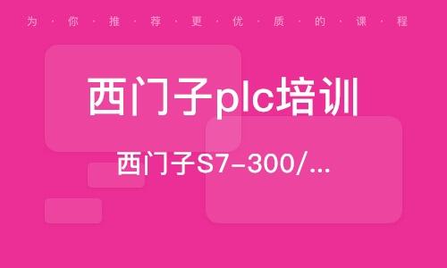 西門子S7-300/400PLC編程班