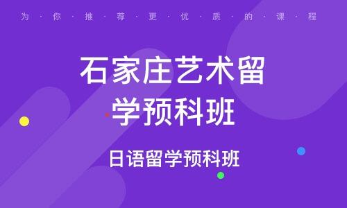 石家庄艺术留学预科班