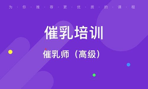 武汉催乳培训