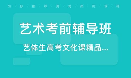 广州艺术考前辅导班
