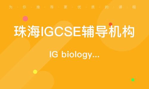珠海IGCSE輔導機構
