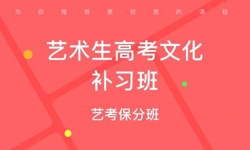 广州艺术生高考文化补习班
