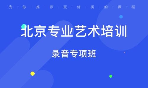 北京专业艺术培训