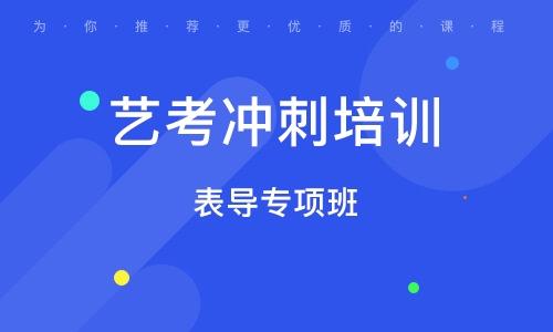 北京艺考冲刺培训