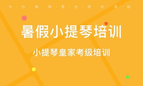 深圳暑假小提琴培训