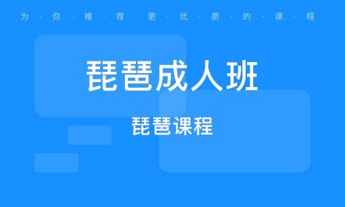 深圳琵琶成人班