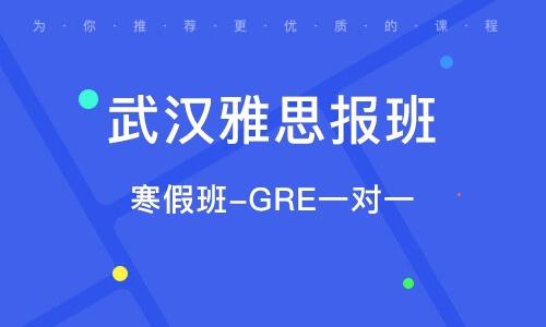 寒假班-GRE一对一