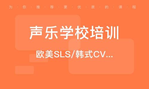 歐美SLS/韓式CV唱法一對一教學精品