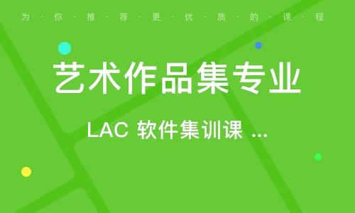 LAC 软件集训课 [线上/线下]