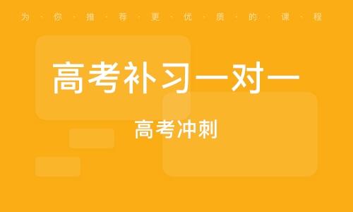 广州高考补习一对一