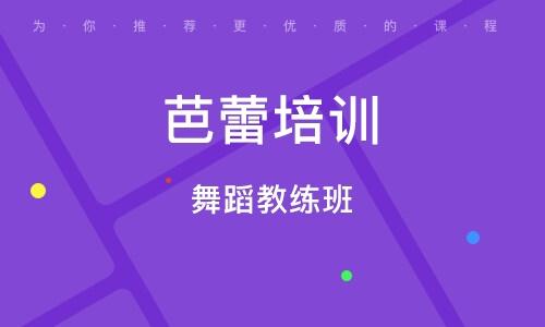 南京芭蕾培训机构