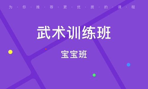 南京宝宝班