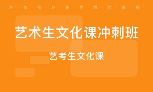 广州艺术生文化课冲刺班