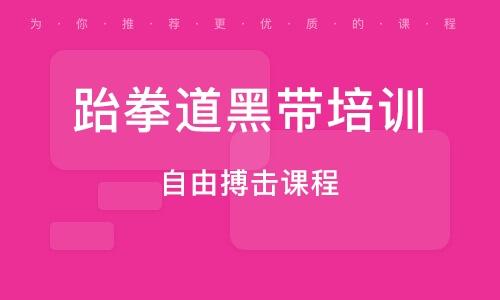 南京跆拳道黑带培训