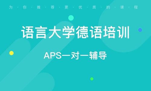 APS一对一辅导