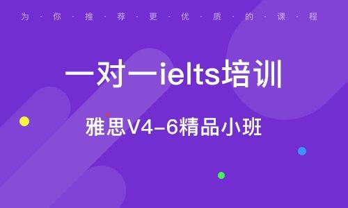 雅思V4-6精品小班