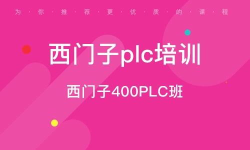 西門子400PLC班