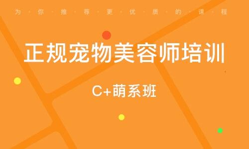 C+萌系班