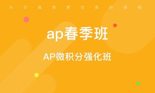 AP微积分强化班