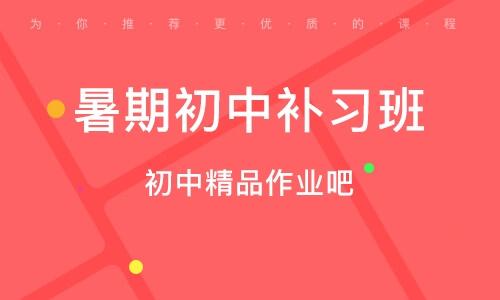 北京暑期初中補習班