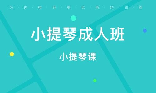 杭州小提琴成人班