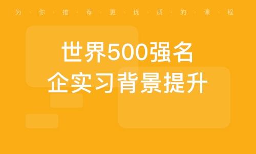 世界500强名企实习背景提升