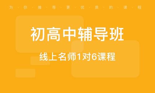 上海初高中指导班