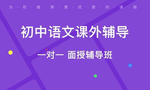 太原初中语文课外指导