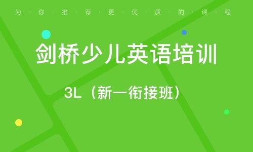 3L(新一銜接班)