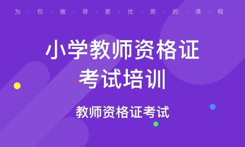惠州小学教师资格证考试培训