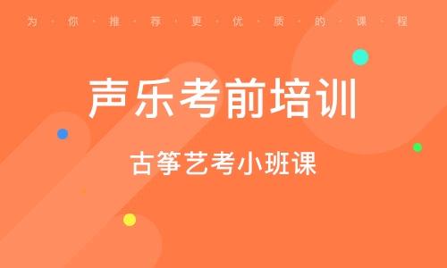 深圳古箏藝考小班課