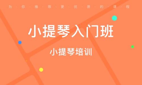 惠州小提琴培訓