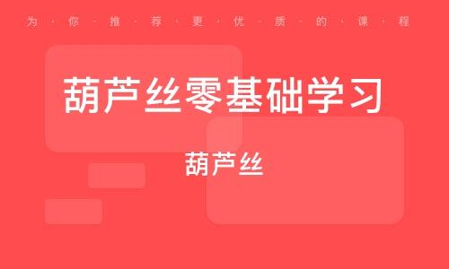 武漢葫蘆絲零基礎學習