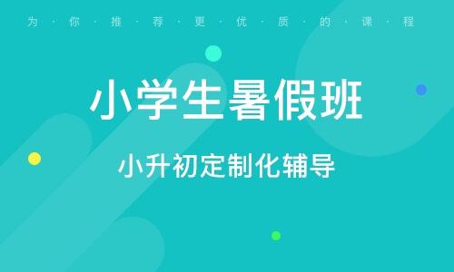 杭州小學生暑假班