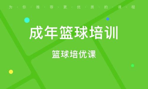 上海成年籃球培訓