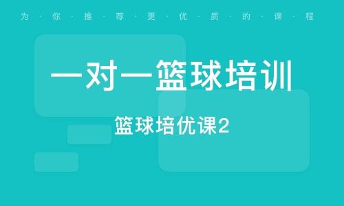 上海一對一籃球培訓