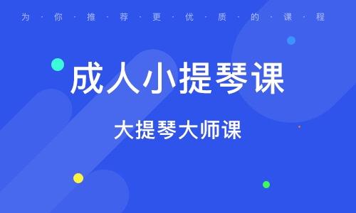 北京成人小提琴課