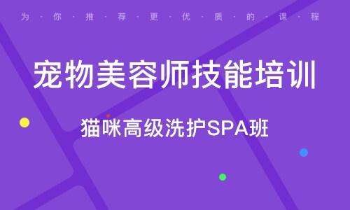 廣州寵物美容師技能培訓